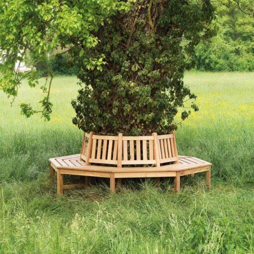 Banc tour d'arbre Fontainebleau